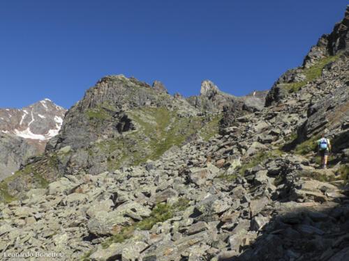 Ascesa al monte Vioz dal Doss dei Cembri