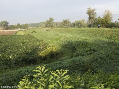 Ciclovia del fiume Oglio. Argini e campi coltivati di pianura.