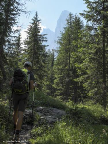 Escursione a piedi in val Brenta