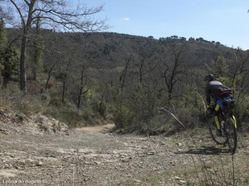 Greenway del torrente Nestore in bici