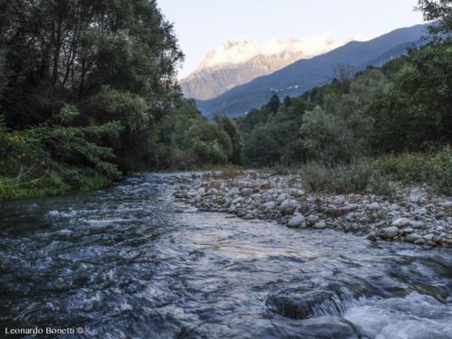 Il fiume Oglio in alta val Camonica.