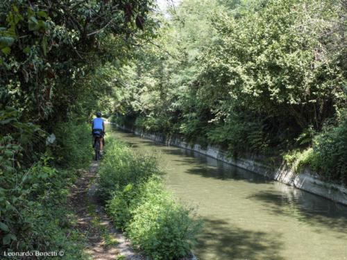 Il sentiero verde più spettacolare in riva all'Oglio.