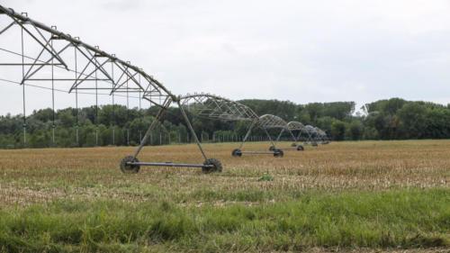 Metodi di irrigazione nei campi.