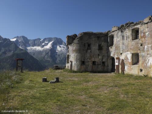 Natura e storia al Passo del Tonale. Forte Saccarana