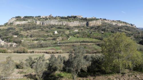 Panoramica rupe di Orvieto