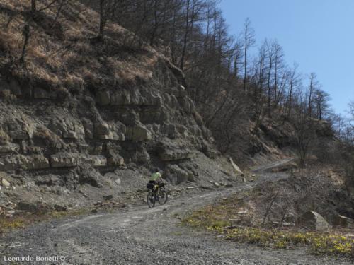 Via di Francesco riserva naturale Alpe della Luna